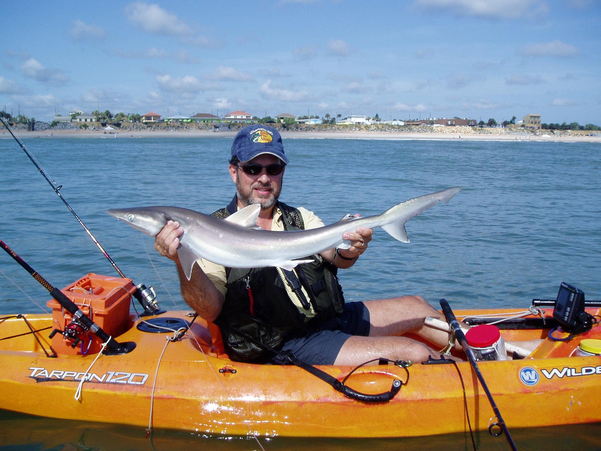 Shark by Kayak